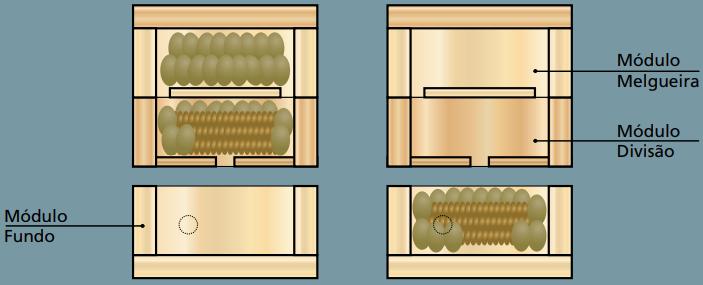 Divisão de Colônias - Distribuição dos elementos da colônia durante uma divisão com o método deperturbação mínima