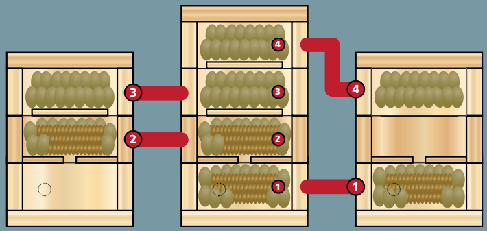 Divisão de Colônias - Distribuição dos elementos durante a divisão de uma colônia com duasmelgueiras cheias