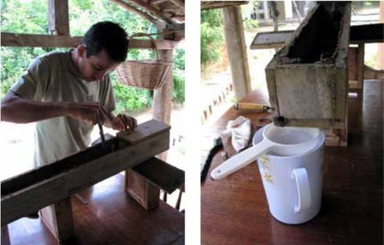 Método de coleta por perfuração dos potes