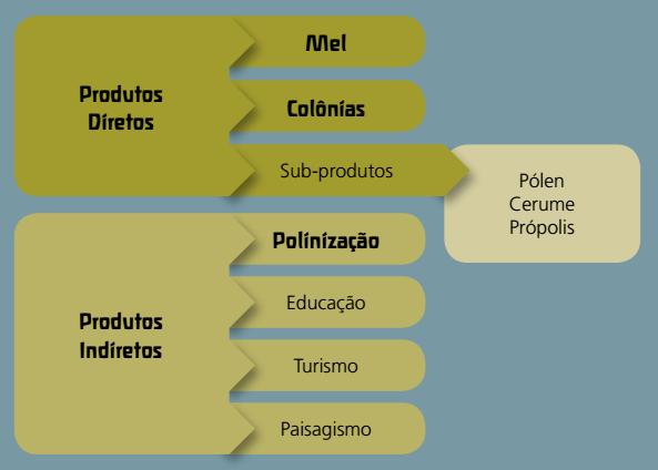 Objetivos da Meliponicultura